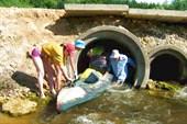 13 июля 2008. Река Сережа. Сквозь бетонные трубы.