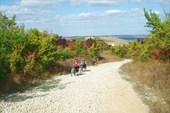 Дорога к горе Тепе-Оба