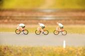 Велосипедисты - не тройняшки!
