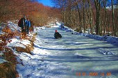 Спуск по замерзшей дороге на линолеуме :)))