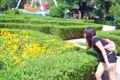 В парке много зелени, так что вы можете отдохнуть на скамейки и