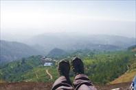 Керала