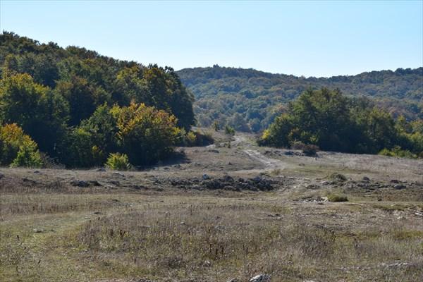 Взгляд назад, выезд из букового леса на Караби яйлу