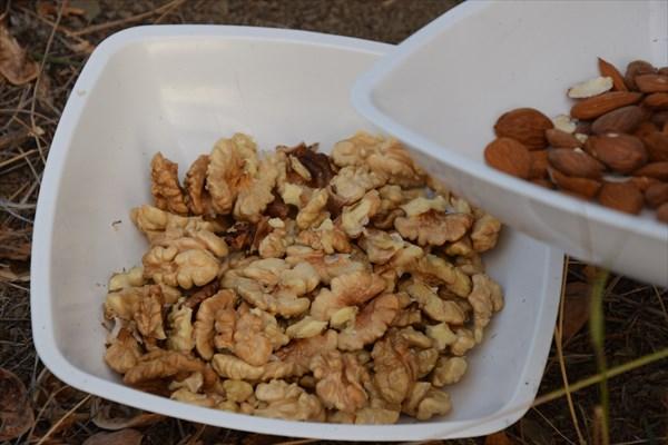 Миндаль и грецкий орех