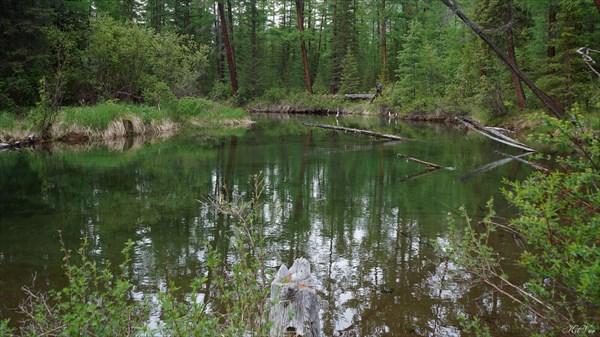 Протока реки Жомболок
