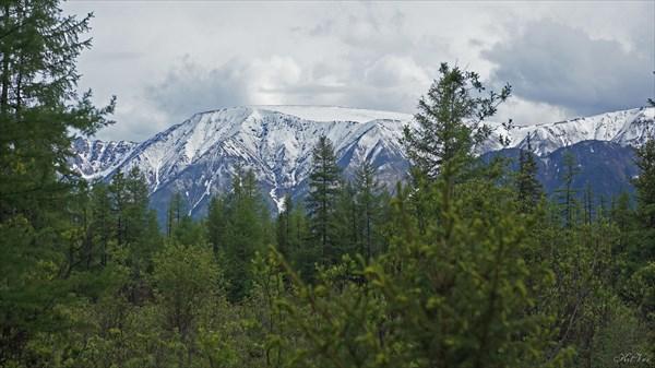 В долине Жомболока. Свежевыпавший снег.