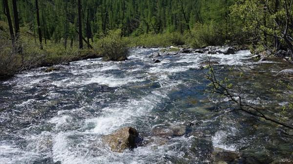 Река Хакта. Здесь у нас была переправа