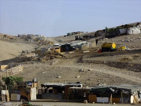 Бедуины есть и в Израиле