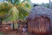 Деревня майя