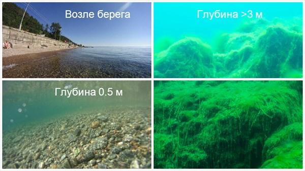 Листвянка: чистый берег и спирогира на глубине