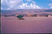 Пустыня на острове