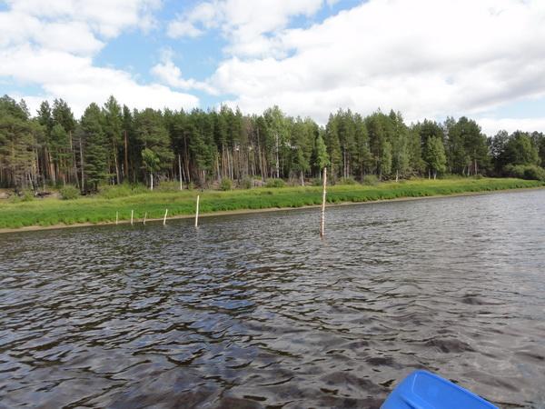 Дрыны для сеток в устье Пелыма.