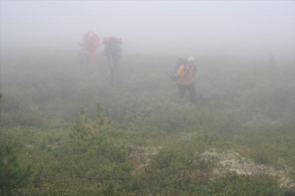 А под ногами, сквозь туман...