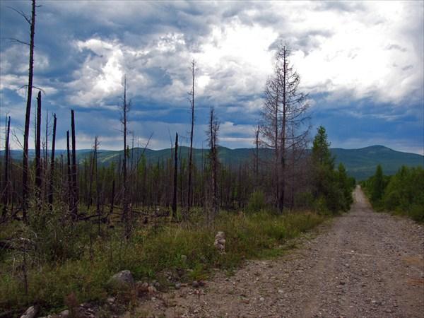 Дорога в счастливую долину...