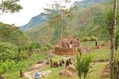Племя селимо в долине Балием. Строят новый дом.