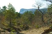 Гора парагельмен