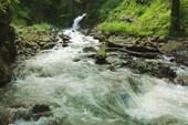 Водопад `Черный рябчик`