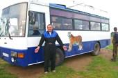 наш автобус с тигром