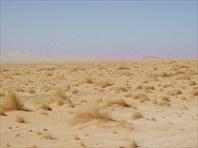 Магические пейзажи пустыни