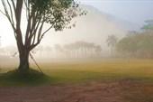 Лесной монастырь на рассвете