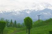 Горы Заилийского Алатау...