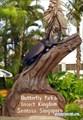 Памятник Жуку