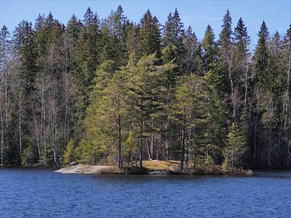 Остров на оз. Лесоостровское
