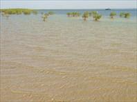Дорога из Дакара к Гамбии