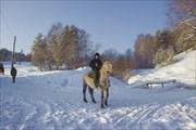 Подготовка к новогоднему конному походу