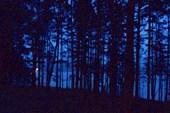 Рассвет над Ангарой