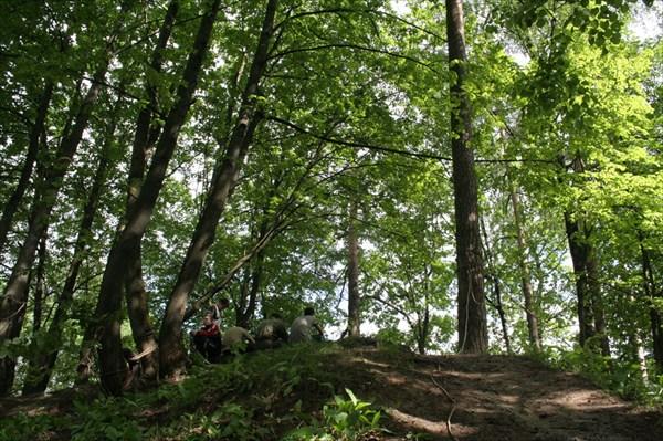 Обычная горка в лесу...