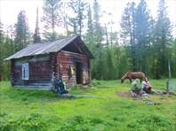 Охотничья изба-Алтайский край
