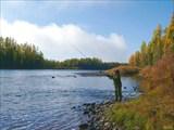 Рыбалка на впадении притока Сосновый
