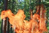 Огненный дух