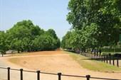020-Гайд-парк