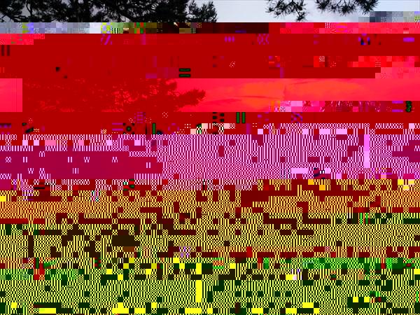 Наша палатка на берегу в Lahteela