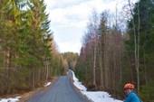 Типичная дорога