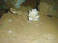 кристаллы гипса в пещере B&O