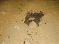 Остатки костра которым более 2000 лет