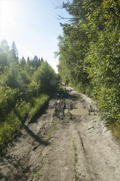 Дорога на валунную дамбу - хороший участок