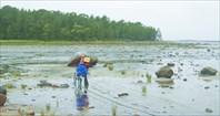 С велосипедом по отливу