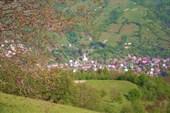 Вид на Кобылецкую Поляну с перевала