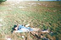 Ай-Петри. Весна 2001. ком. Трощенко