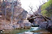 Чарынский природный парк