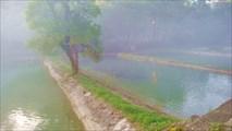Утренний туман на форелевом