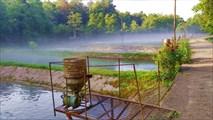 Расход корма на 1 пруд 10 кг в сутки