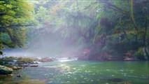 Утро на форелевом хозяйстве, река Черная