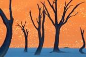 Мертвая долина Дидвлей