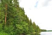 Озеро Нетецкое.