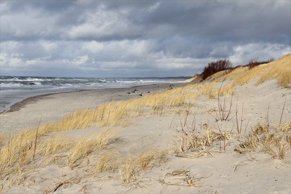 Пески наступают